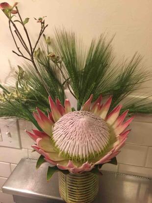 Protea, flower bouquet