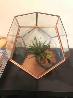 Suculents Terrarium