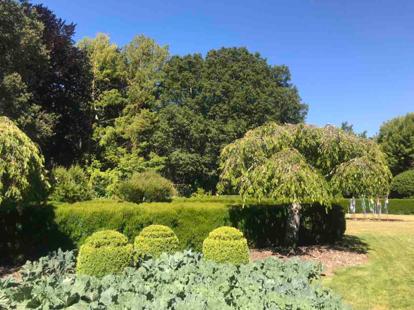 Garden, Topiary